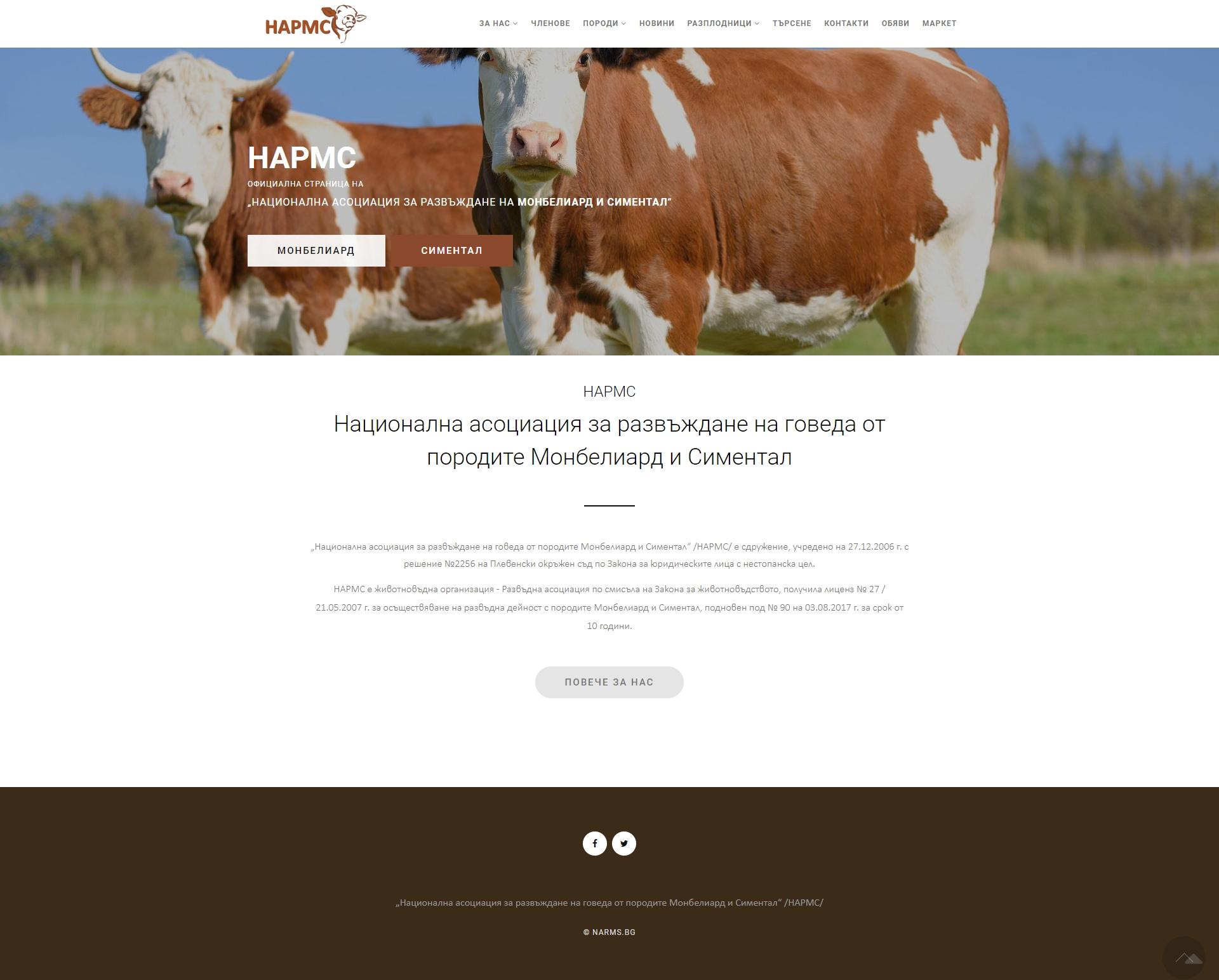 Уеб сайт за национална асоциация